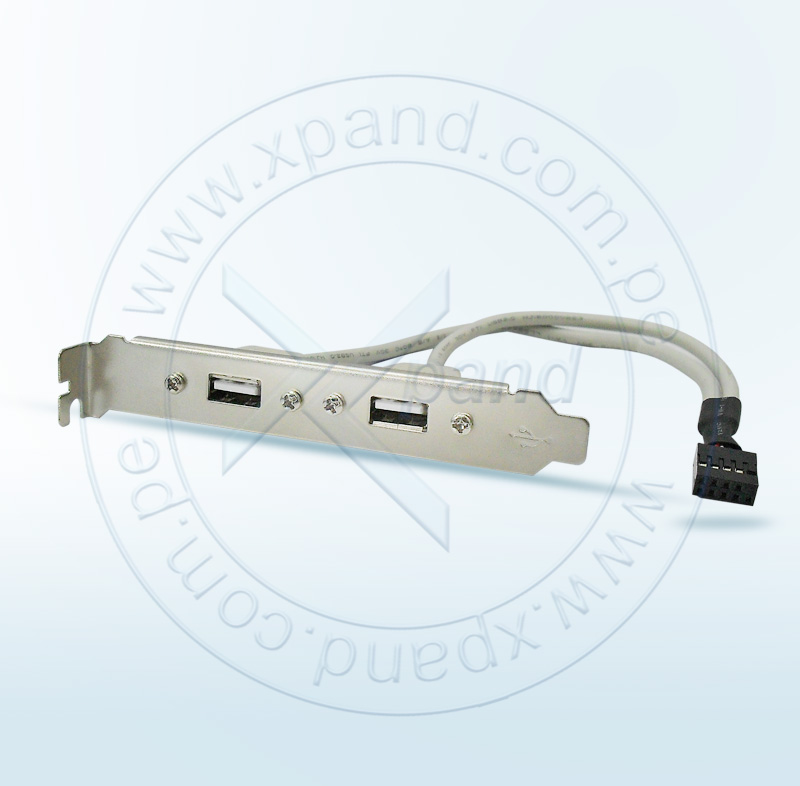 Imagen: ACCESORIOS ENSAMBLAJE; BYTECC; CABLE BRAKT USB 2.0 2-PORT STD